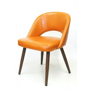 Jetson Mid-Century Modern Side Chair
