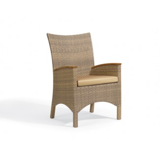 Cloyden Arm Chair