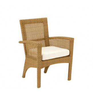 Trinidad Dining Arm Chair with Seat Cushion 6U0001