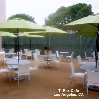 Resin side chairs and patio umbrellas